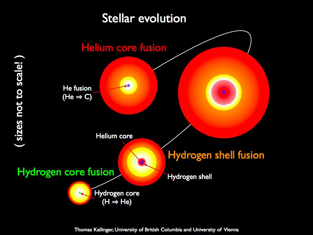 Main sequence stars by nasa